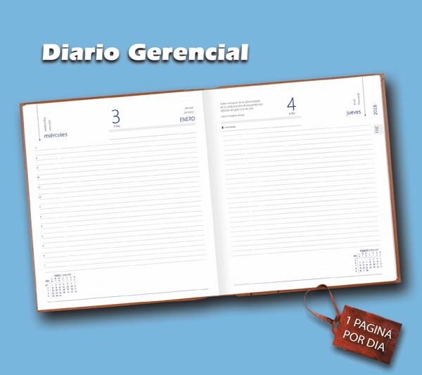 Diario Gerencial Larimar